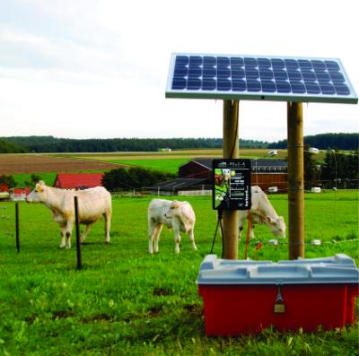Cerco Electrico Solar